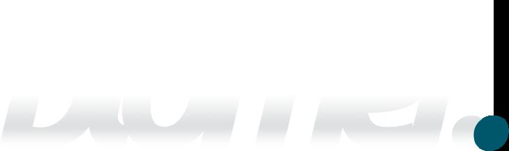 blomer-logo-2